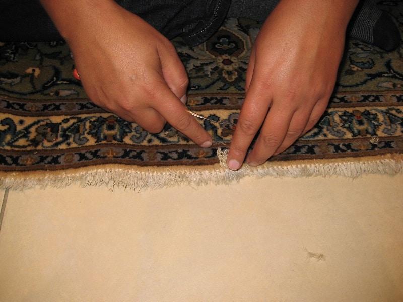 remplissage de la laine (dégâts de mites)